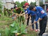 TX.Thuận An: Thực hiện 7/9 nhiệm vụ trọng tâm về bảo vệ môi trường