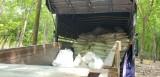 Bắt quả tang xe tải đổ bùn thải trong vườn cao su