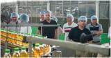 Doanh nghiệp Canada tìm cơ hội hợp tác với Tập đoàn Tân Hiệp Phát