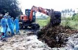 Quảng Ninh lập các chốt liên huyện kiểm soát dịch tả lợn châu Phi