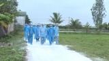 国际社会帮助越南应对非洲猪瘟疫情
