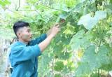 """Tuổi trẻ Phú Giáo: Đẩy mạnh phong trào """"Thanh niên làm theo lời Bác"""""""