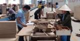 Công nghiệp huyện Dầu Tiếng: Phát triển đúng hướng