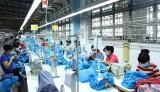 Kinh tế - xã hội của tỉnh phát triển ổn định, tạo đà hoàn thành kế hoạch năm