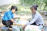 Hội LHPN tỉnh: Tạo động lực giúp phụ nữ khởi nghiệp