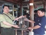 Người dân chung tay bảo vệ động vật hoang dã