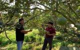 Phát triển du lịch xanh tại xã Bạch Đằng