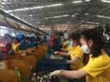平阳省工业继续保持良好增长态势