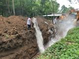 Quyết liệt xử lý ổ dịch tả heo châu Phi ở Phú Giáo