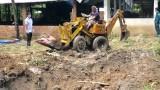 Bệnh dịch tả heo châu Phi xảy ra ở Phú Giáo: Xử lý dứt điểm, không để lây lan