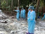 Chủ động nguồn lực để phòng chống hiệu quả bệnh dịch tả heo châu Phi