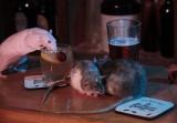 Du khách trả 1,1 triệu đồng để uống một ly cocktail với chuột