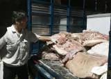 Bắt giữ hàng trăm kg thịt heo thối trong chợ Đông Đô