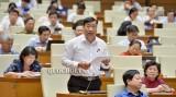 越南第十四届国会第七次会议公报(第十九号)