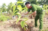 Planting trees for a green Binh Duong