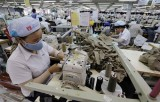 European firms consider  Vietnam feasible investment destination