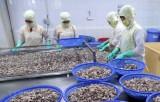 Ngành thủy sản có thể đạt kim ngạch xuất khẩu 10 tỷ USD
