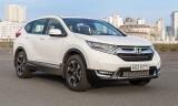 Những mẫu ôtô tạo đột biến nửa đầu 2019