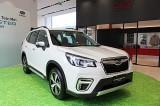 Subaru Forester giá cao nhất gần 1,3 tỷ - cơ hội nào trước CR-V, CX-5