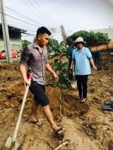 Hội LHPN phường Phú Mỹ, TP.Thủ Dầu Một: Ra quân trồng cây xanh, vệ sinh môi trường