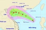 Áp thấp nhiệt đới có thể mạnh thành bão, gió giật cấp 11