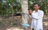 Phú Giáo: Chú trọng công tác dân tộc trong tình hình mới