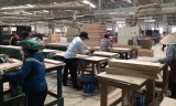 油汀县:工业续见起色