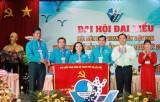 Hội LHTN Việt Nam TP.Thủ Dầu Một: Tổ chức Đại hội Đại biểu lần thứ VII, nhiệm kỳ 2019-2024