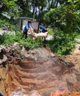 Phường Tân Bình, TX.Dĩ An: Tiêu hủy hơn 100 con heo bị bệnh dịch tả châu Phi