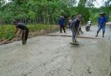 Sharing efforts in homeland construction