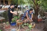 Dựa vào cộng đồng để phòng, chống bệnh sốt xuất huyết