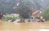 Thủ tướng: Chủ động làm tốt hơn nữa công tác ứng phó hậu quả mưa lũ