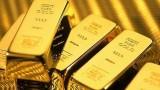 9月19日越南黄金价格下调10万越盾