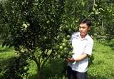 Lan tỏa phong trào nông dân sản xuất, kinh doanh giỏi