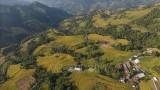 越南河江省黄树肥力争走向可持续发展