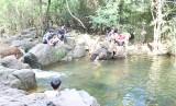 Dau Tieng ecotourism absorbs tourists