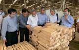 Ngành công thương:  Nỗ lực quản lý tốt  lĩnh vực công nghiệp