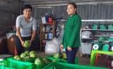 HTX Tân Mỹ: Chung tay làm giàu
