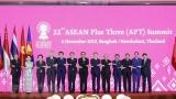 越南政府总理阮春福出席第22次东盟与中日韩领导人会议