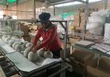 Phú Giáo: Kinh tế phát triển ổn định