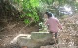 Trại heo trên 10.000 con gây ô nhiễm: Có hay không việc đặt cống ngầm xả thải ra sông Bé?
