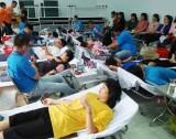 Hơn 250 đoàn viên, sinh viên tham gia hiến máu tình nguyện
