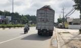 Xe tải chở mùn cưa phát tán bụi trên đường: Cần tăng cường kiểm tra, xử lý