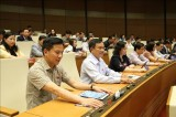 越南第十四届国会第八次会议:通过关于2020年国家财政预算的决议