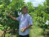 Ngành nông nghiệp: Ứng dụng công nghệ để tạo đột phá
