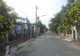 Xã An Sơn: Dấu ấn nông thôn mới