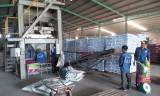 Sản xuất sạch hơn tại công ty phân bón: Hướng đến phát triển bền vững