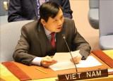 越南为担任联合国安理会非常任理事国职务做好准备