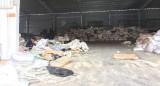 Thông tin tiếp theo vụ cơ sở tái chế nhựa gây ô nhiễm: Chủ nhà xưởng không hợp tác với tổ kiểm tra