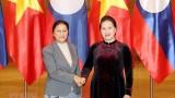 越南国会主席阮氏金银会见老挝国会主席巴妮•雅陶都